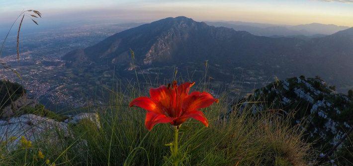 Visita guidata al monte Cengio in notturna